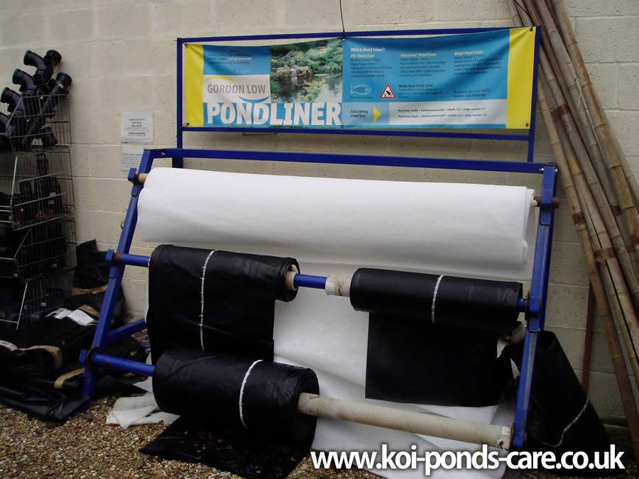 Koi Pond Beginners Guide